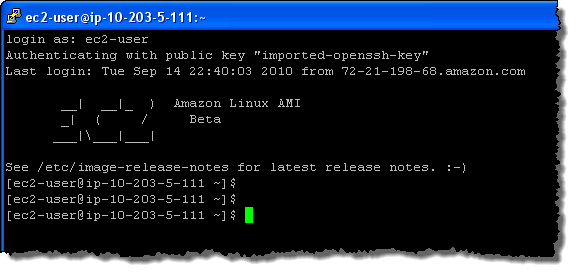 amazon_linux_ami_final